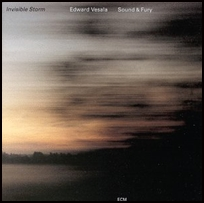 Edward Vesala Invisible Storm.